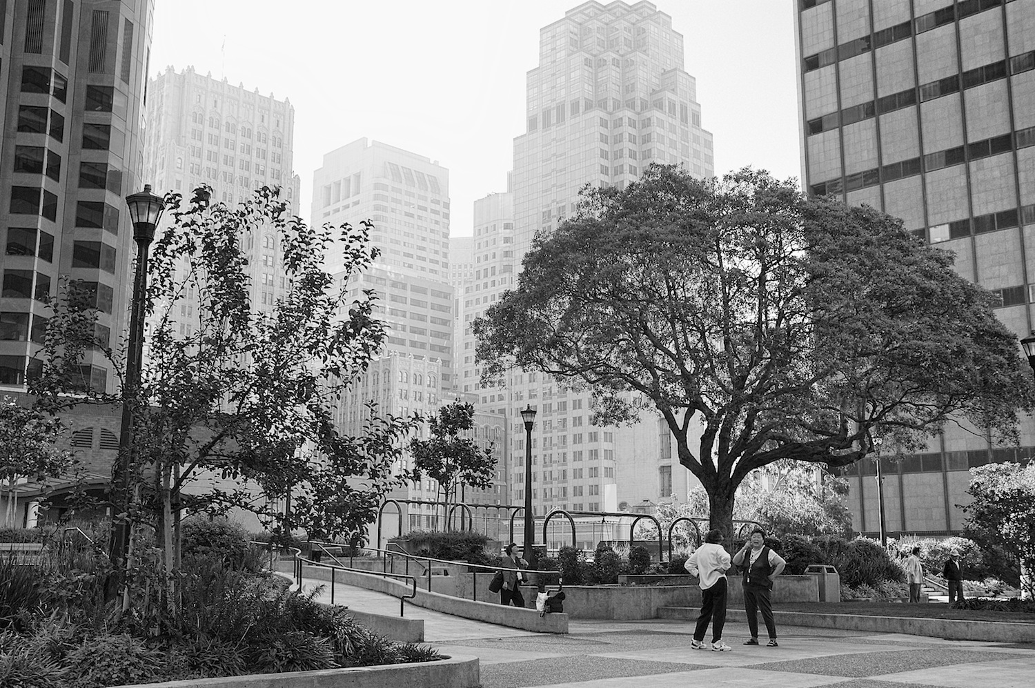 St. Mary's Square, San Francisco